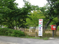 花ショウブ苑 003.JPG
